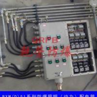 BXMD53防爆照明动力配电箱