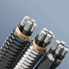 供应忻州 铝合金电缆供应商,忻州 铝合金电缆供应商电话,津成电缆电缆石家庄分公司
